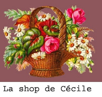 La Shop de Facile Cécile